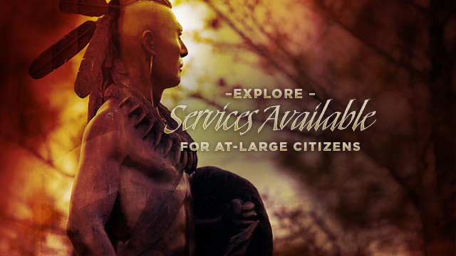 Gateway : Explore Services Available for At-Large Citizens