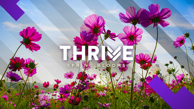 Thrive : Spring Blooms